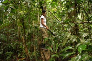 Vzdělávací a incentivní programy v Kostarice